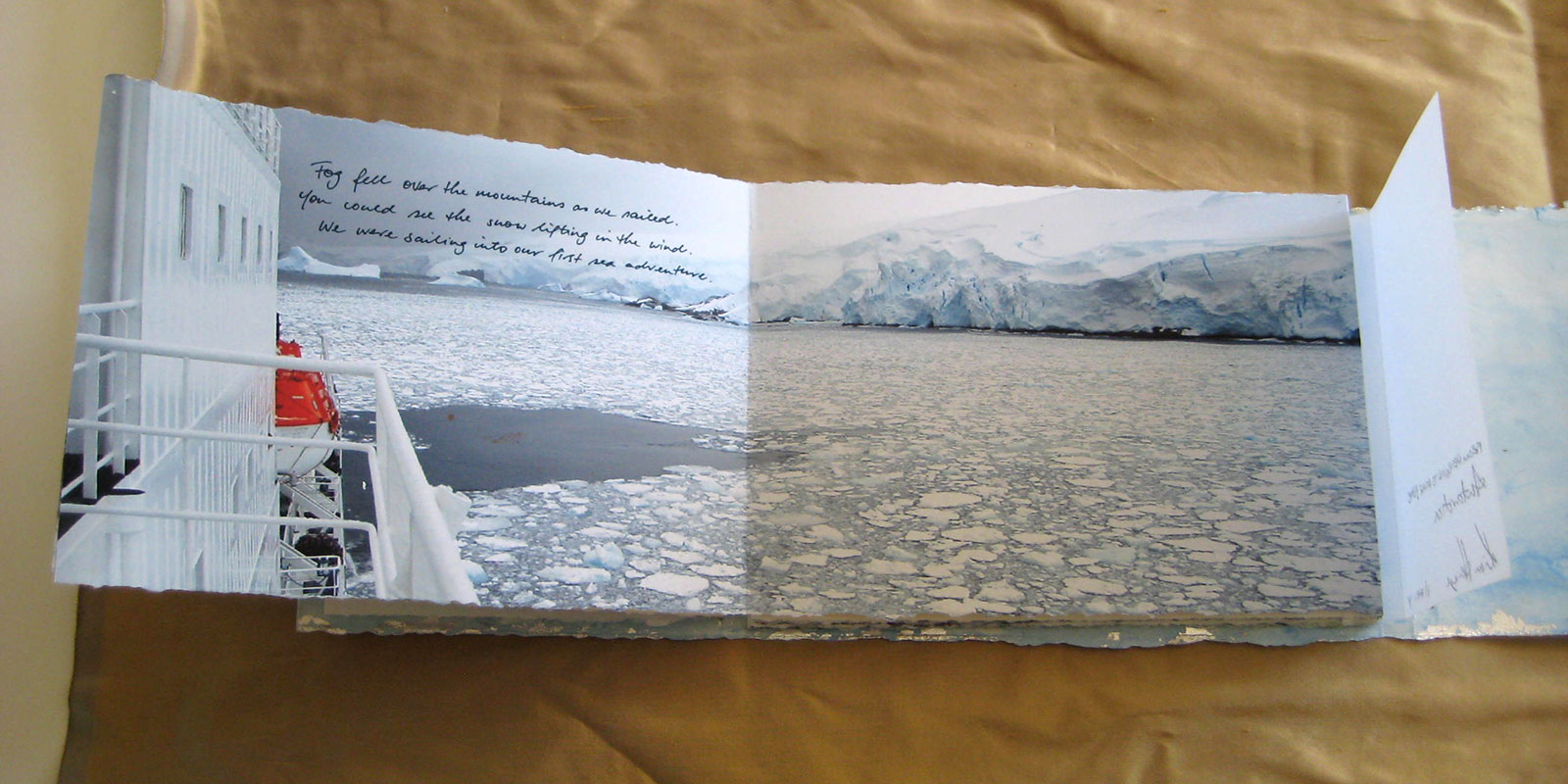 From Penguins to Polar Bears - Antarctica - page 2