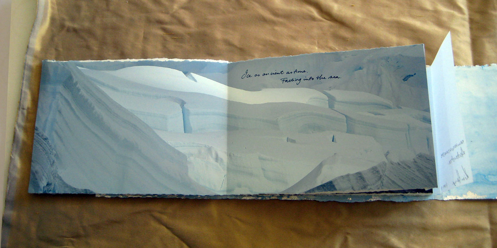 From Penguins to Polar Bears - Antarctica - page 3