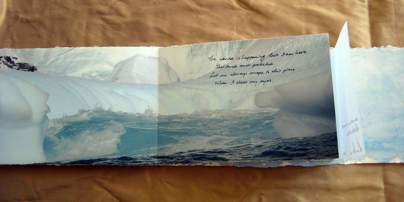 From Penguins to Polar Bears - Antarctica - page 5