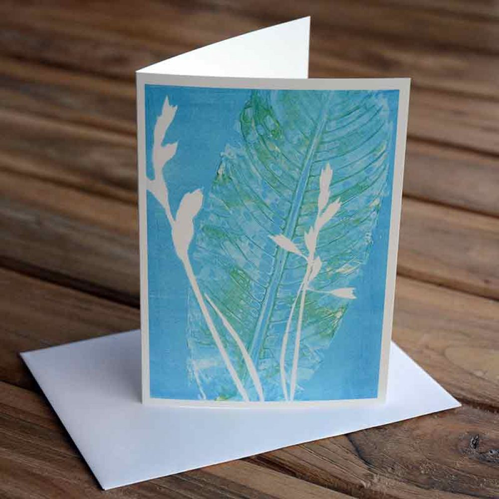 Blank Greeting Card - Morning Dew - by Kim Herringe