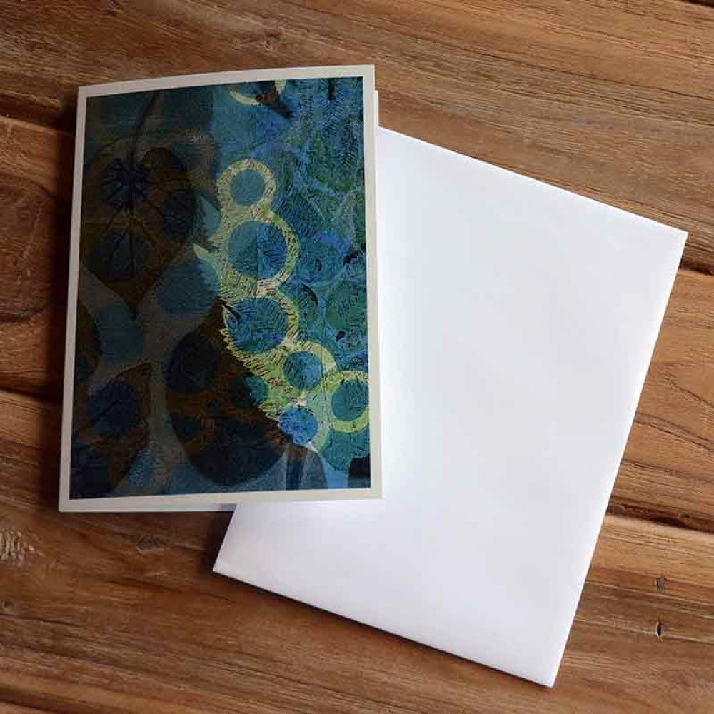Blank Greeting Card - Morning Glory - by Kim Herringe