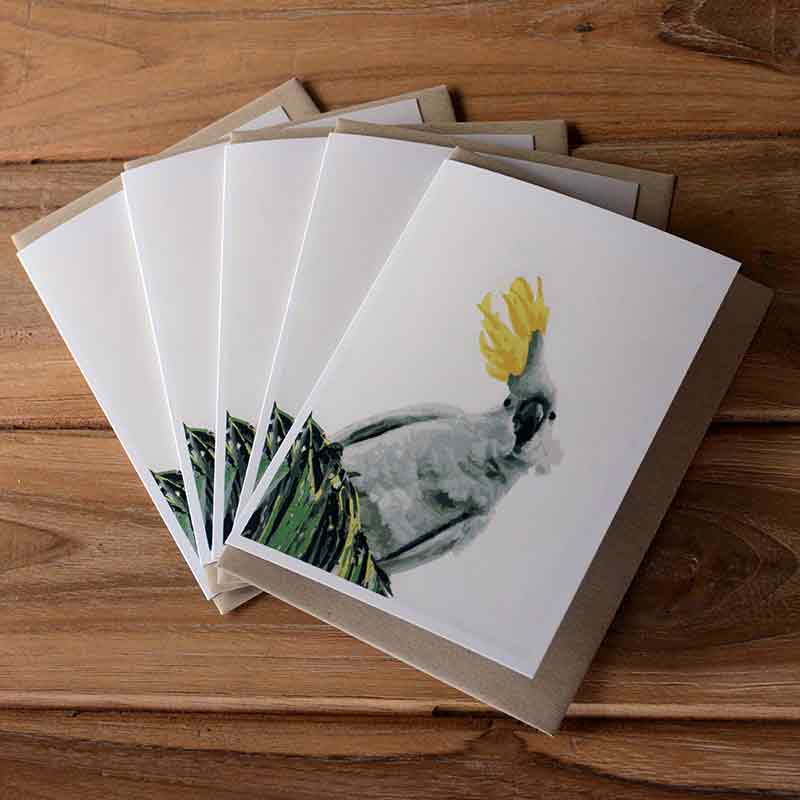 Blank Greeting Card Pack - Ruffled Feathers - by Kim Herringe