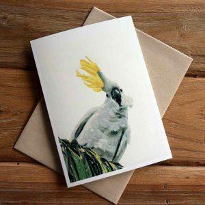 Blank Greeting Card - Ruffled Feathers - by Kim Herringe