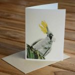 Blank Greeting Card - Ruffled Feathers - by Kim Herringe