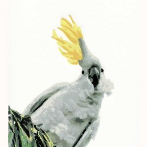 Ruffled Feathers - reductive linoprint by Kim Herringe