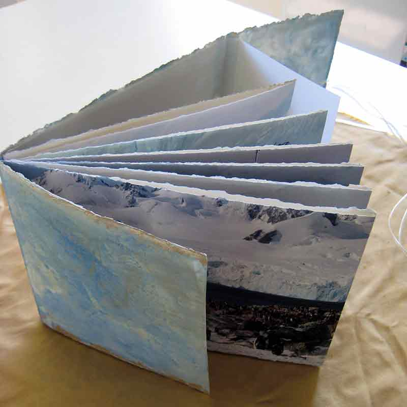 From Penguins to Polar Bears - Antarctica - Artist Book by Kim Herringe
