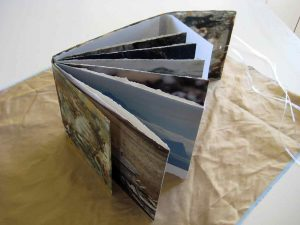 From Penguins to Polar Bears - The Arctic - Artist Book by Kim Herringe