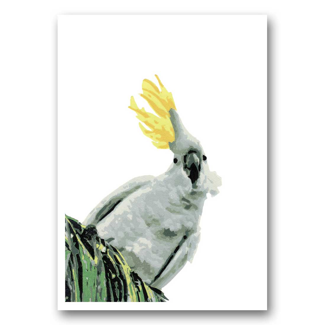 Ruffled Feathers – Greeting Card