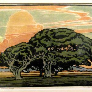 William Rice Del Monte Oaks