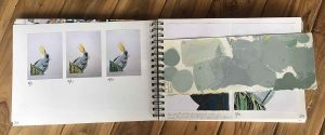 my printmaking process book - Ruffled Feathers by Kim Herringe