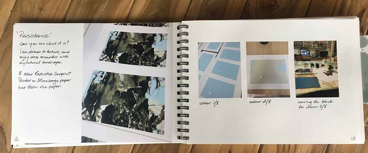 my printmaking process book - Kim Herringe