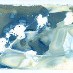 Kim Herringe Cyanotype Untitled