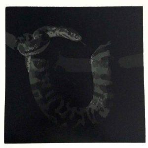 Silent Night, reductive linoprint by Kim Herringe