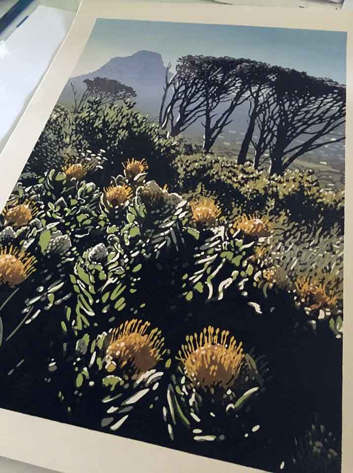 Joshua Miles - Tablemountain Pincushion