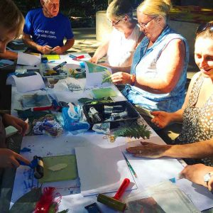 'Botanical Impressions' gelatin plate printing workshop