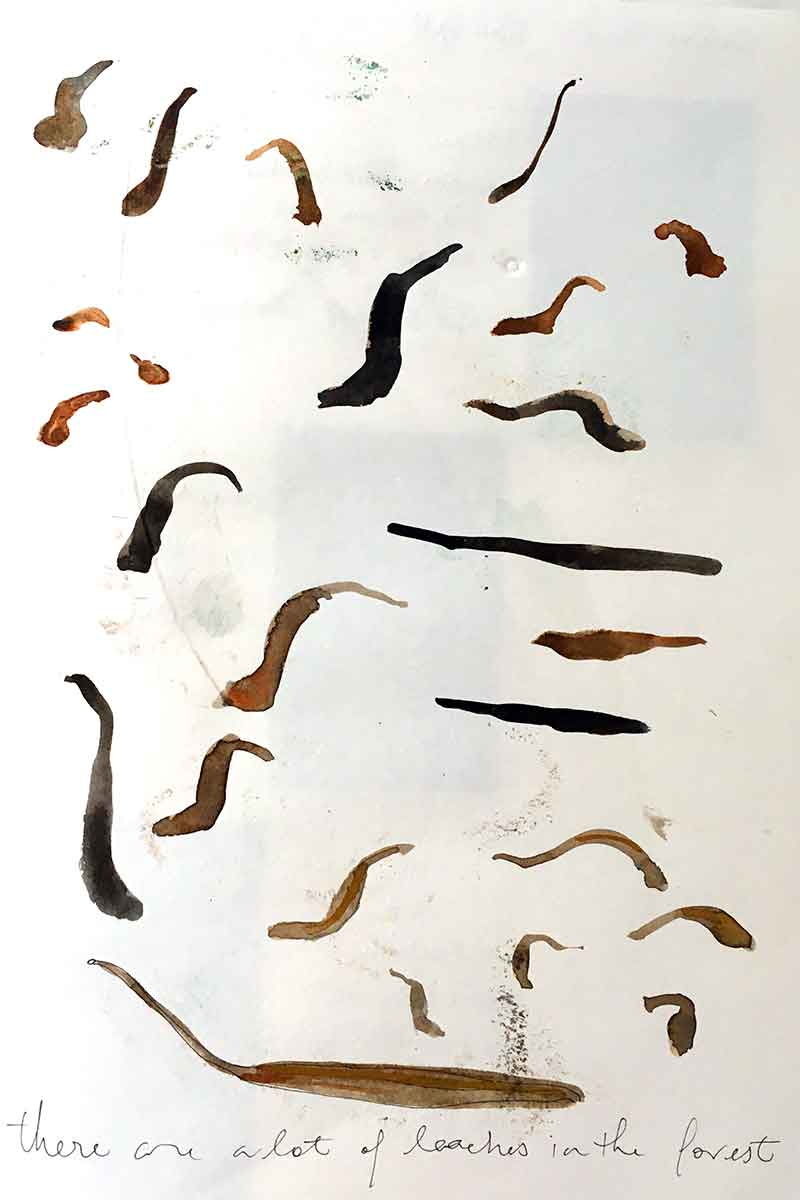 There are a lot of leeches lurking in the forest. Djuli Djuli.