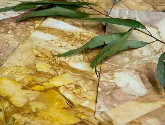 Botanical Impressions eco-printing