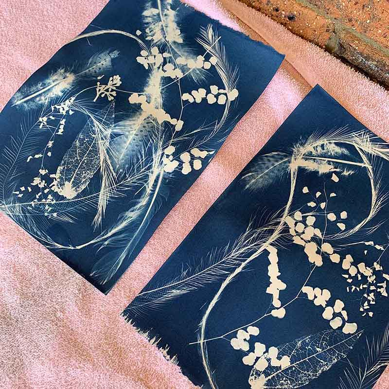 Cyanotype Workshop September 2019