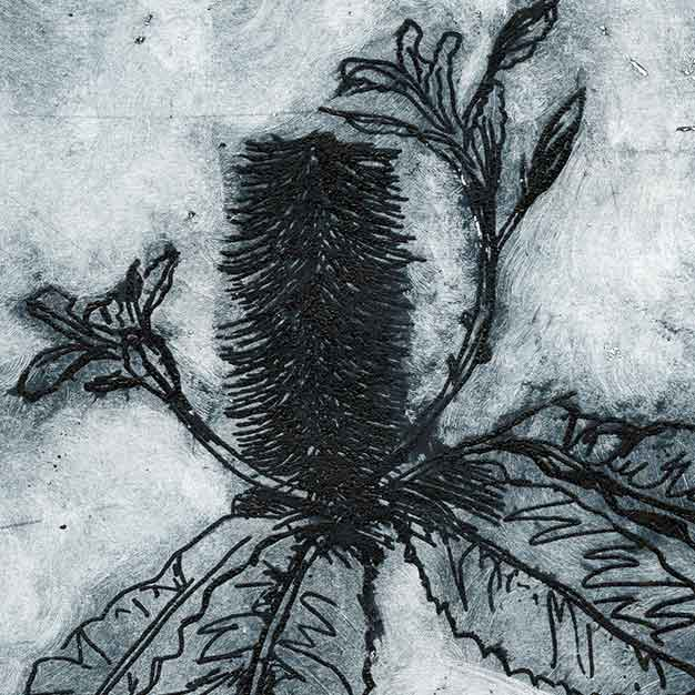 aluminium plate copper sulphate etching - Banksia