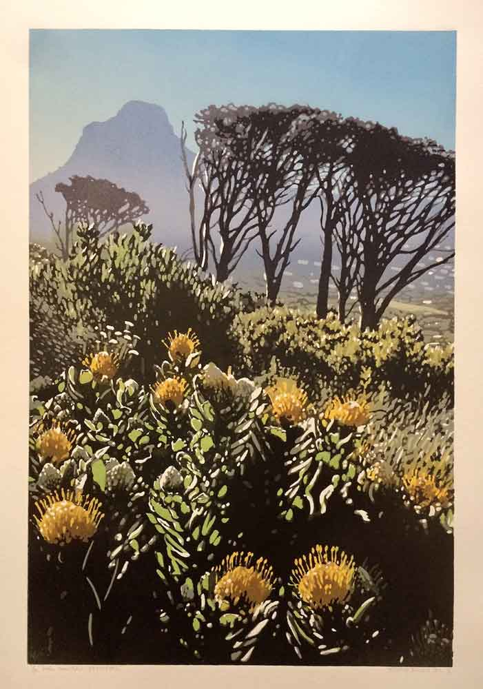 Joshua Miles, Table Mountain Pincushions, reduction linocut