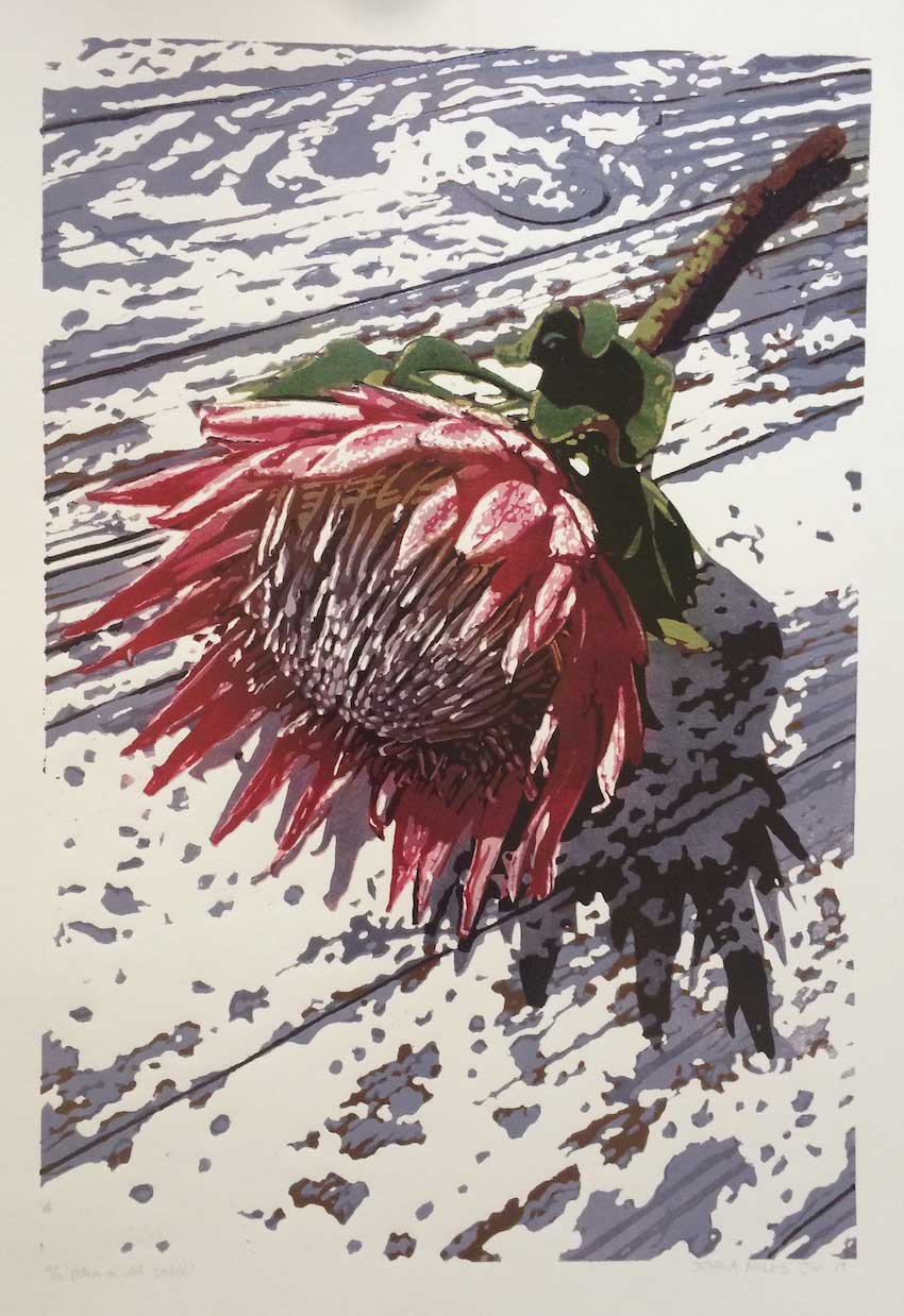 Protea on old table, Joshua Miles reduction linocut