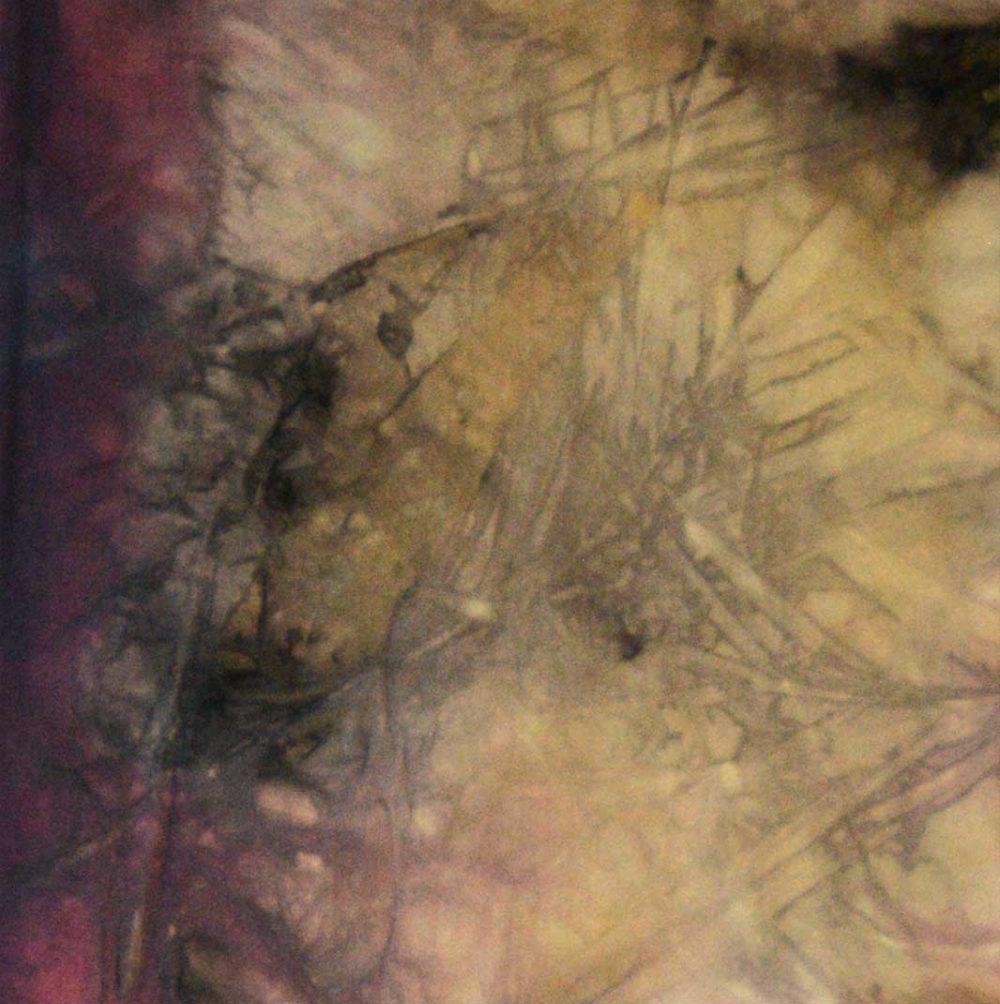 Botanical Eco Print Silk Scarf 160-05 - detail