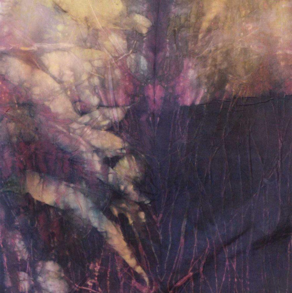 Botanical Eco Print Silk Scarf 160-08 - detail