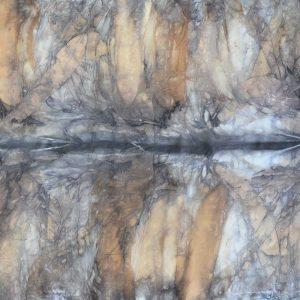 Botanical Print Silk Scarf 160-02
