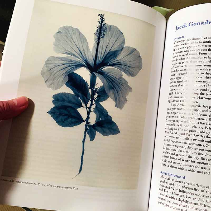 Cyanotype: The Blueprint in Contemporary Practice - inside pages