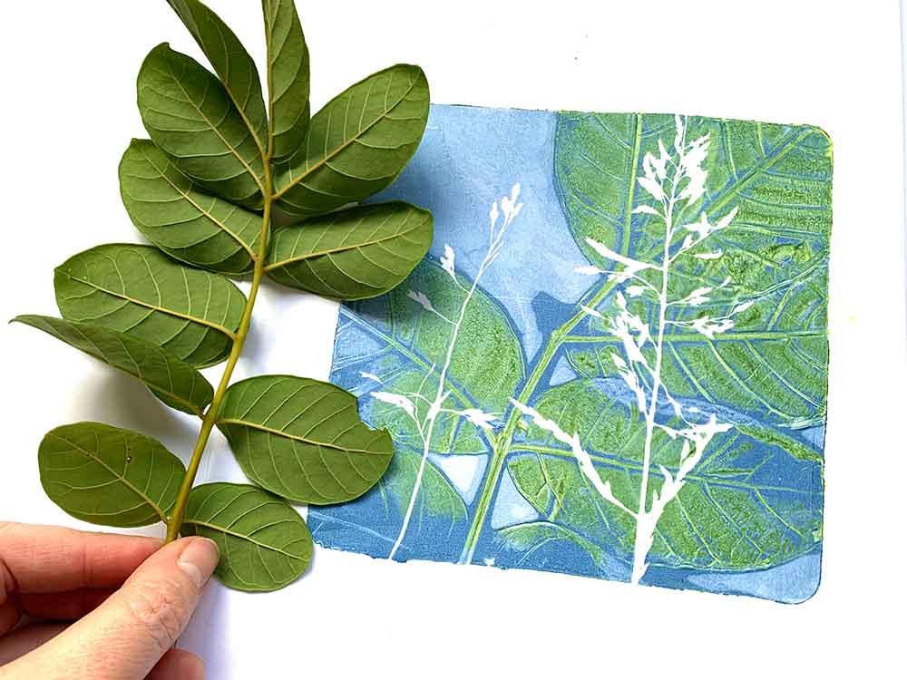 Gel plate monoprinting with African tuliptree leaves