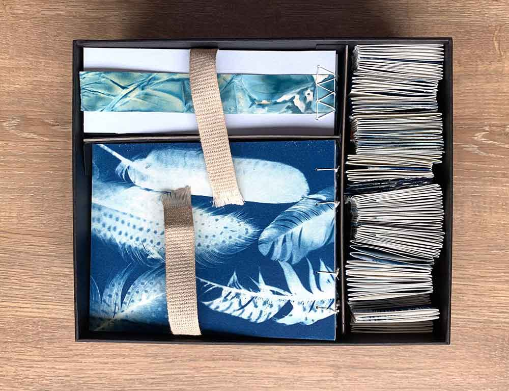 Cyanotype book box