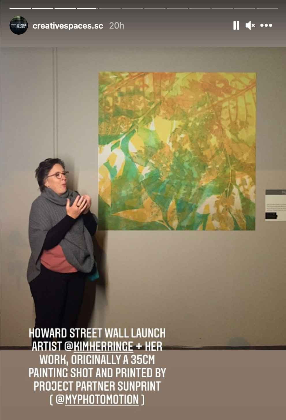 Opening Night at the Howard Street Wall, Nambour